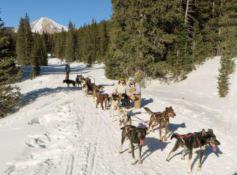 Monarch Dog Sled Tours Salida Colorado