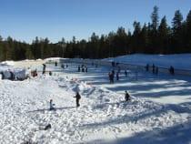 NedRink Ice Skating Nederland