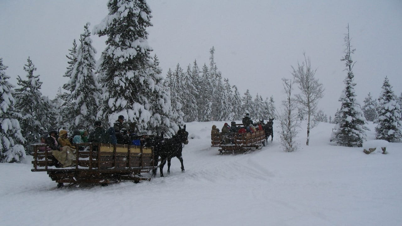 Colorado Sleigh Ride Two Below Zero Frisco