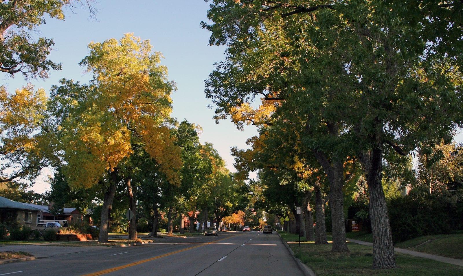 University Boulevard, Denver