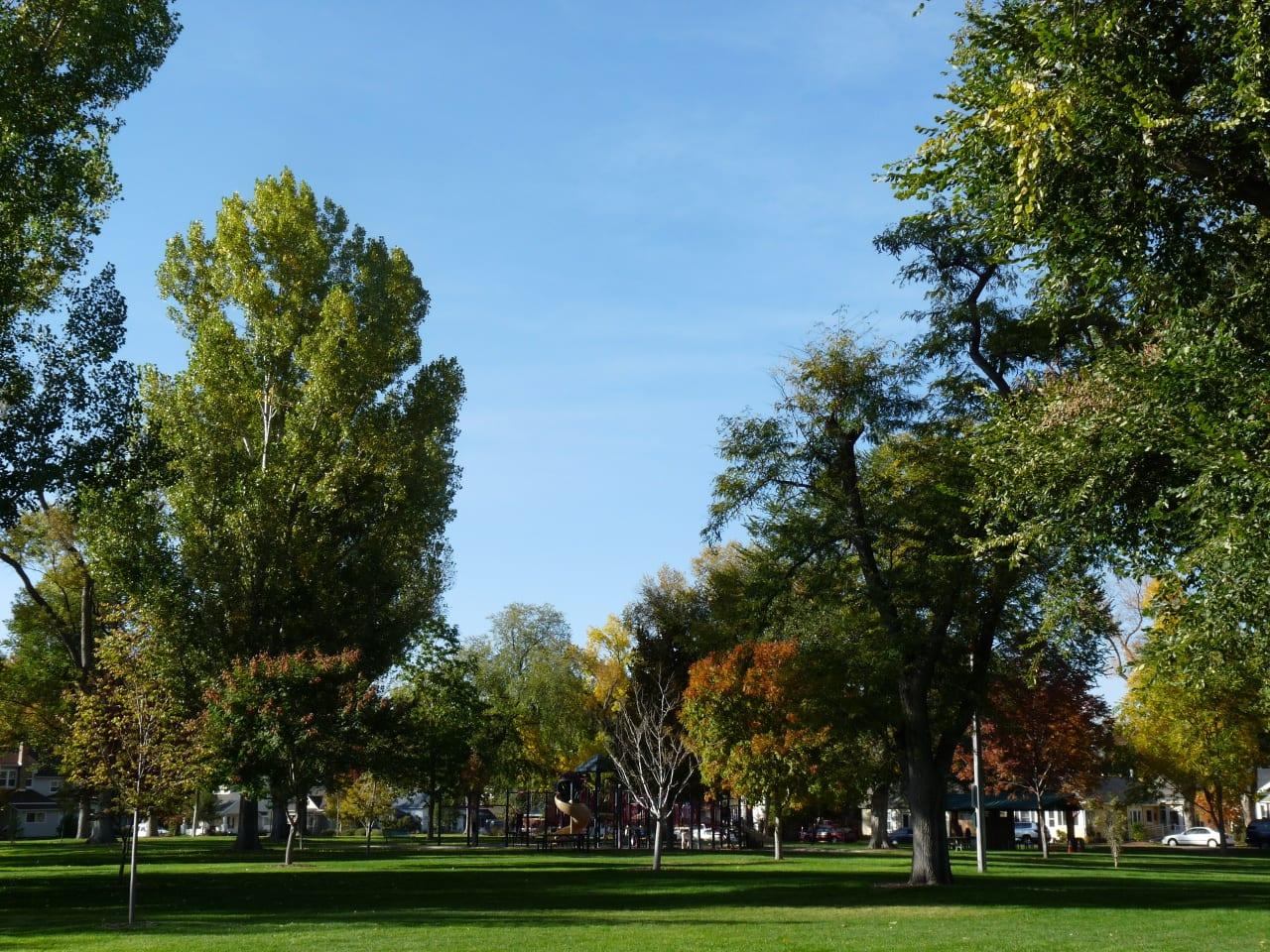 Main Park Windsor Colorado