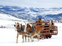 4 Eagle Ranch Sleigh Ride Wolcott