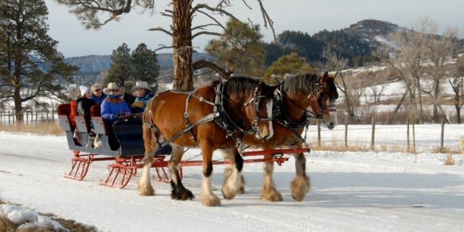 Astraddle A Saddle Sleigh Ride Pagosa Springs
