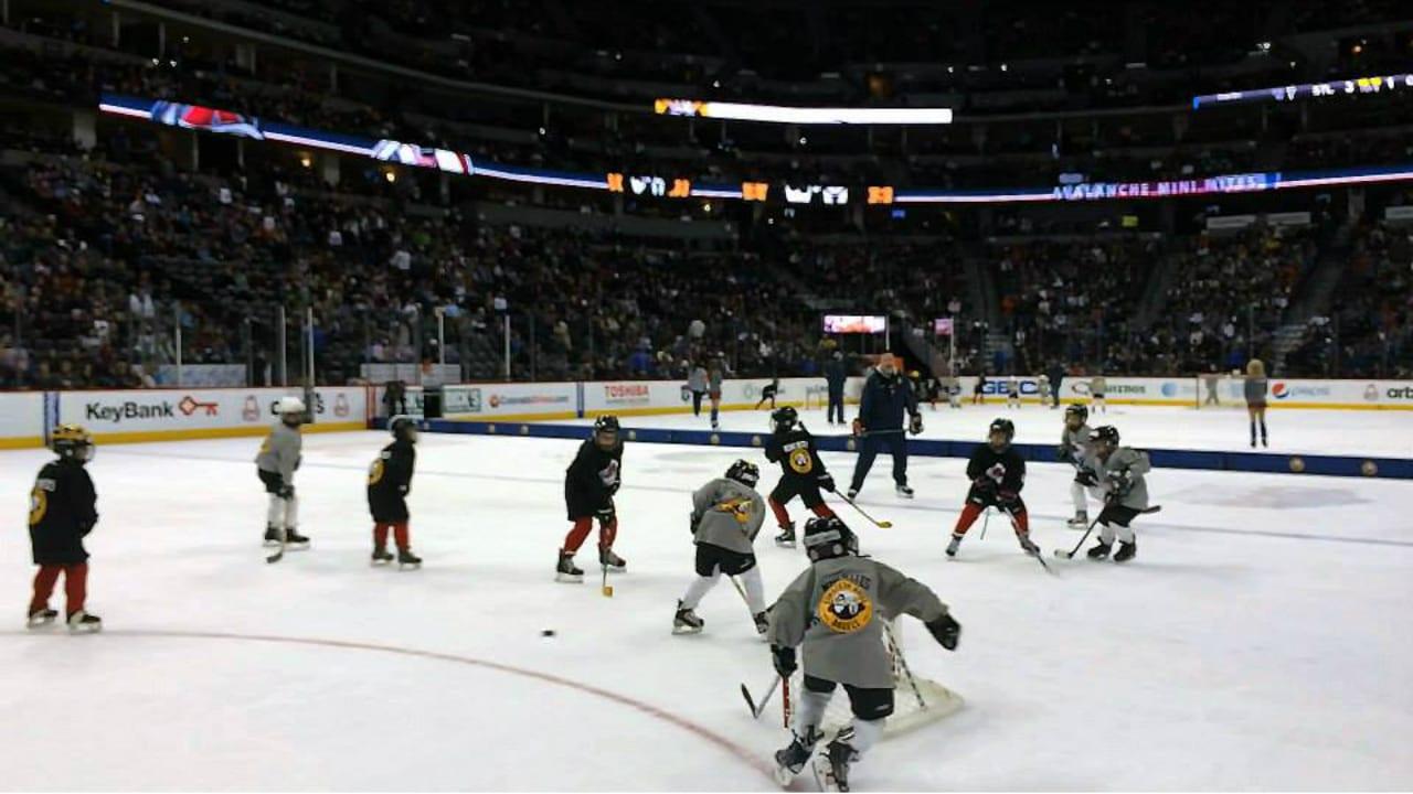 Family Sports Ice Arena