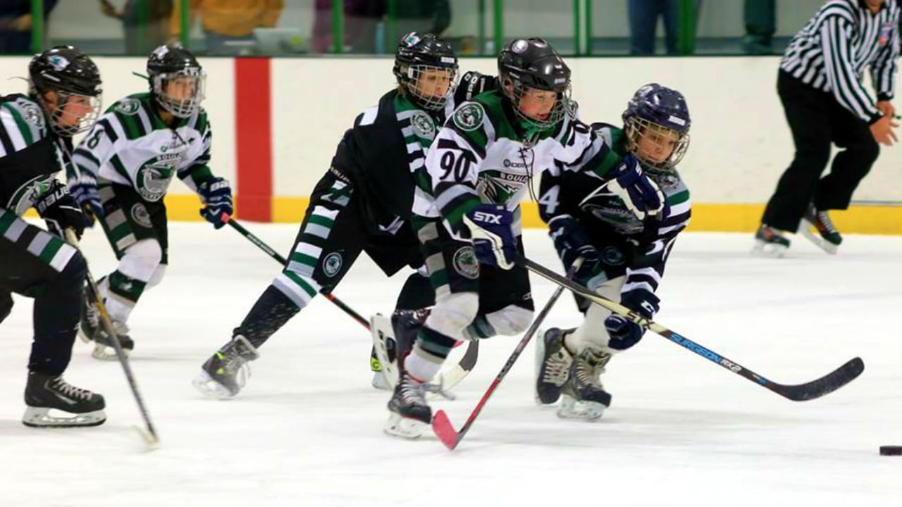 Sport Stable Ice Rink Hockey Superior