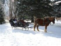 Aspen Carriage Sleigh Ride Winter