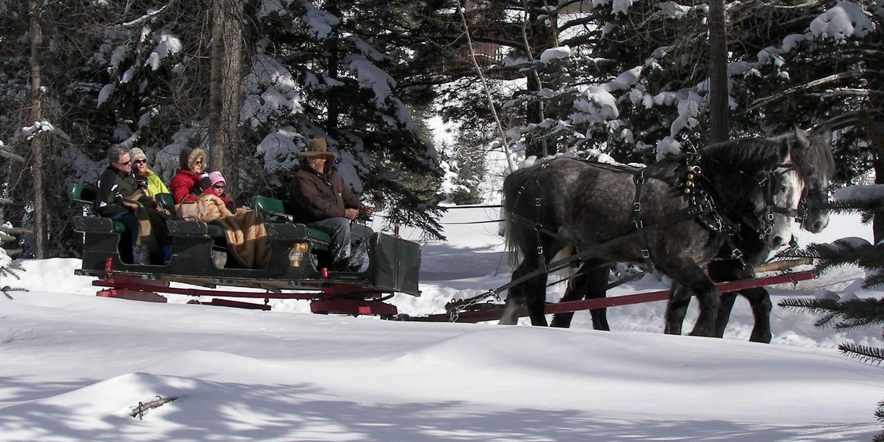 Aspen Carriage and Sleigh Ride Winter Colorado
