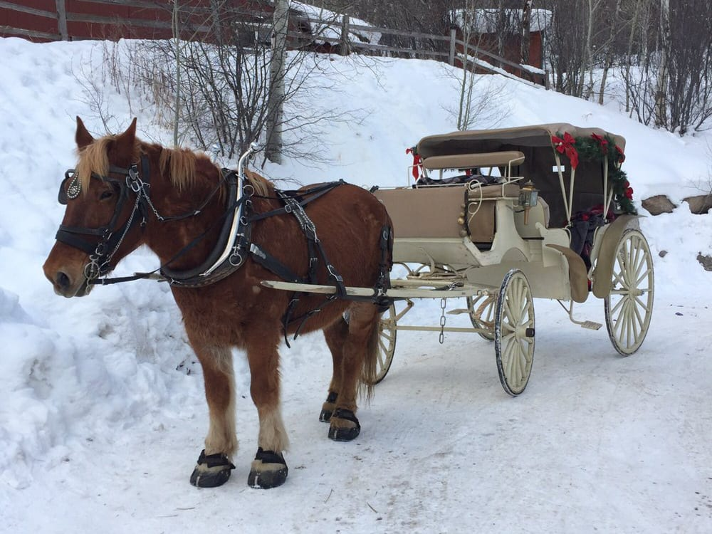 Aspen Sleigh Ride Winter Colorado