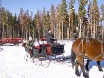 Dash thru the Snow Sleigh Ride Winter Park