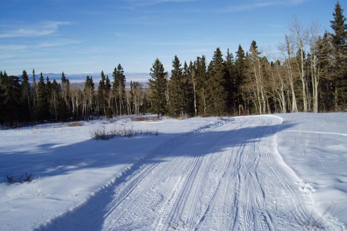 San Juan Nordic Club Groomed Trail Monte Vista Colorado