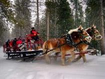 Snow Mountain Ranch Sombrero Stables Sleigh Ride Estes Park