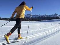 Top Of Pines Nordic Skiing Ridgway