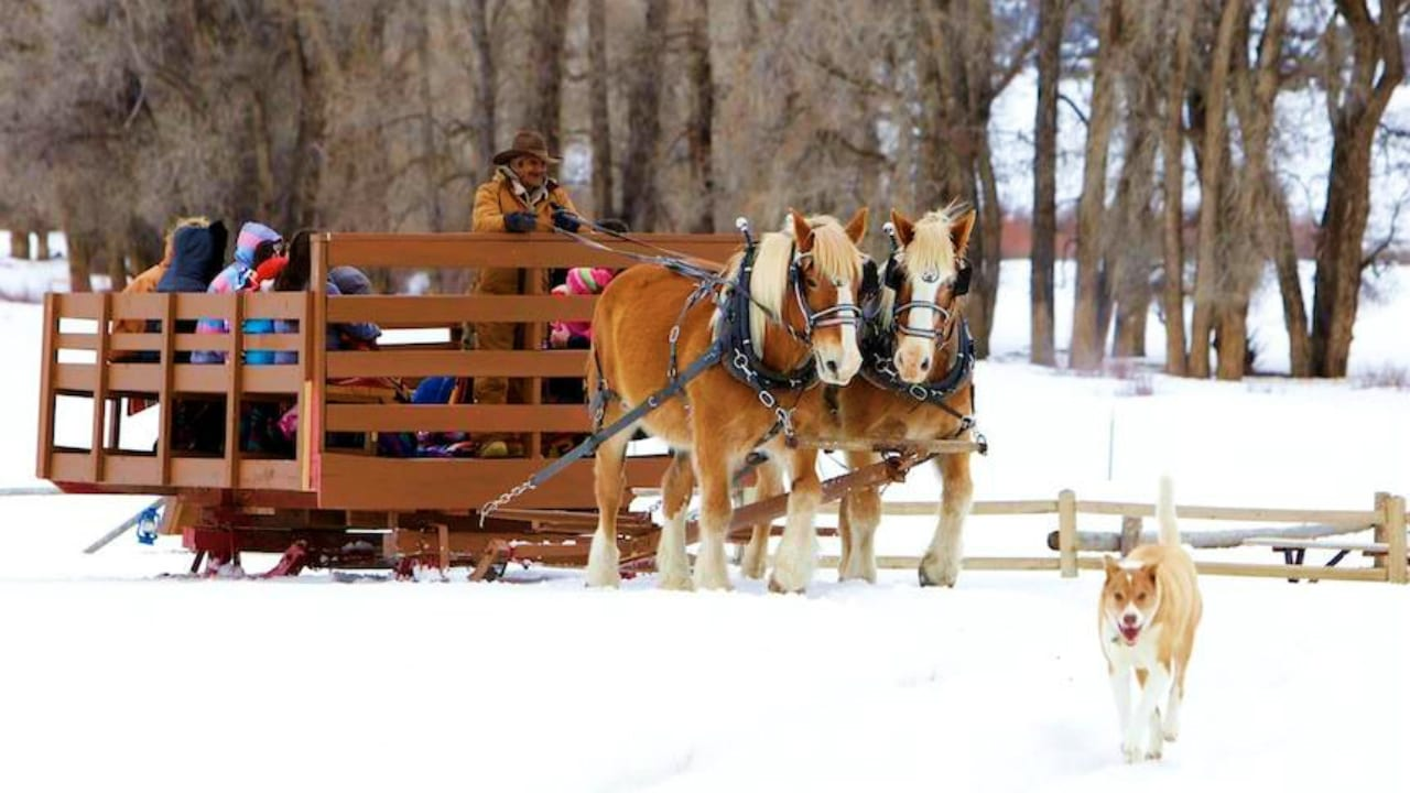 4 Eagle Ranch Sleigh Ride