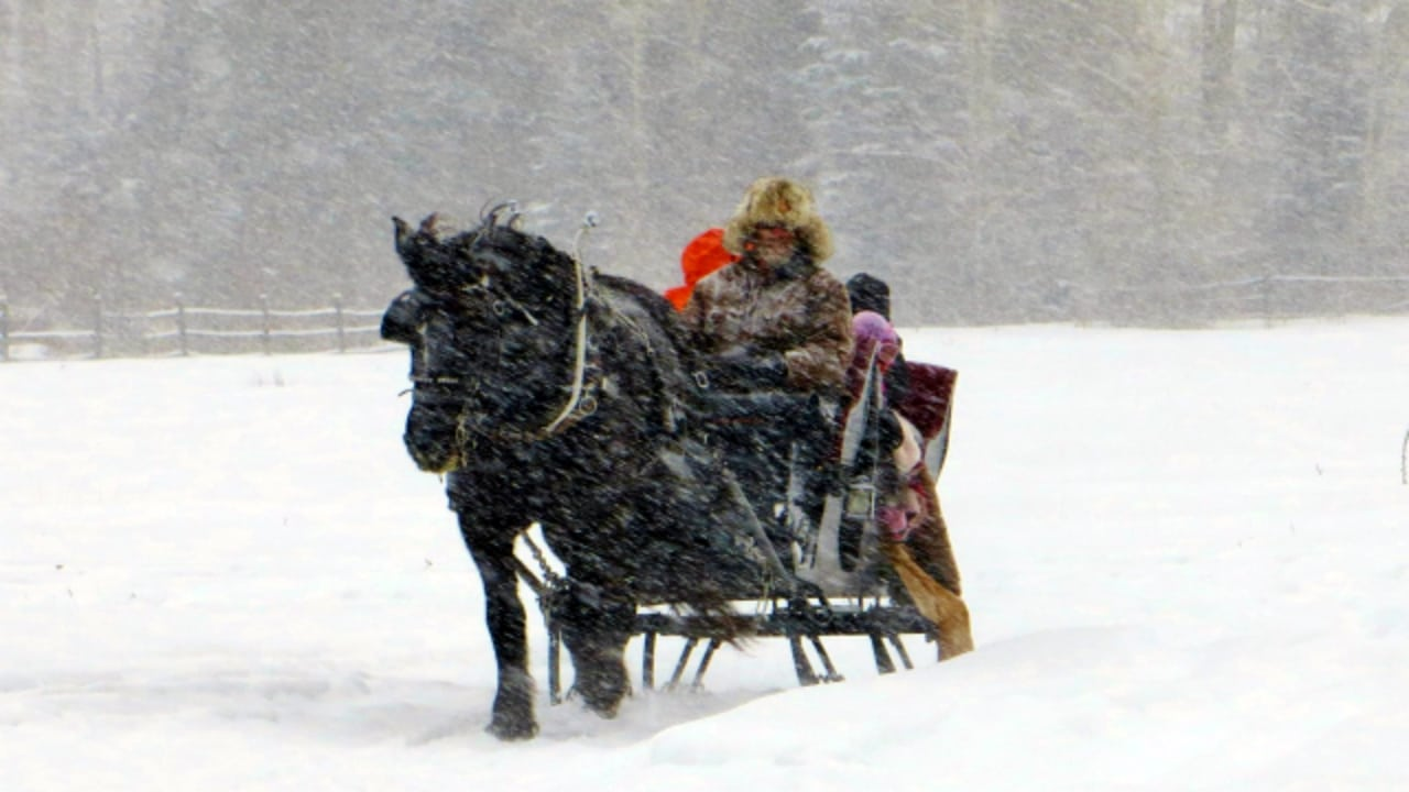 Aspen Carriage and Sleigh Colorado