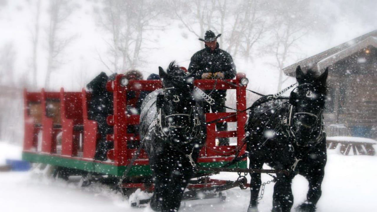 Bearcat Stables Sleigh Ride