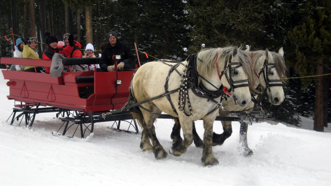 Breckenridge Stables Winter Sleigh Ride