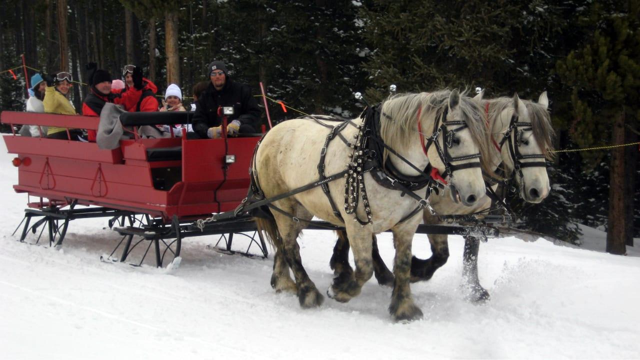 Breckenridge Stables Winter Sleigh Ride