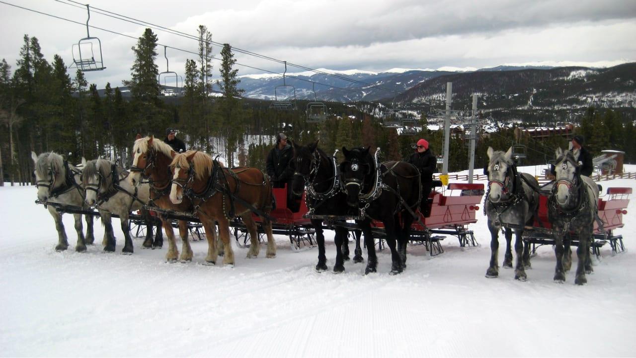 Breckenridge Stables Sleigh Ride Colorado