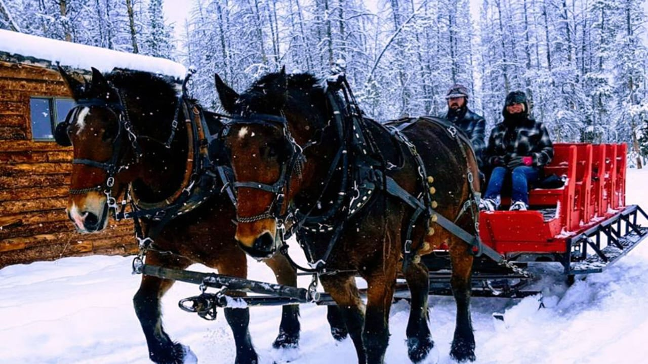 Dashing through Snow Sleigh Rides