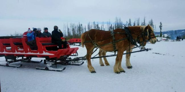 Dashing through Snow Sleigh Rides Fraser Colorado