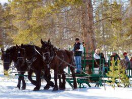 Devil's Thumb Ranch Sleigh Rides Tabernash Colorado