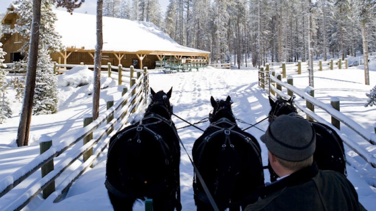 Devil's Thumb Ranch Sleigh Rides