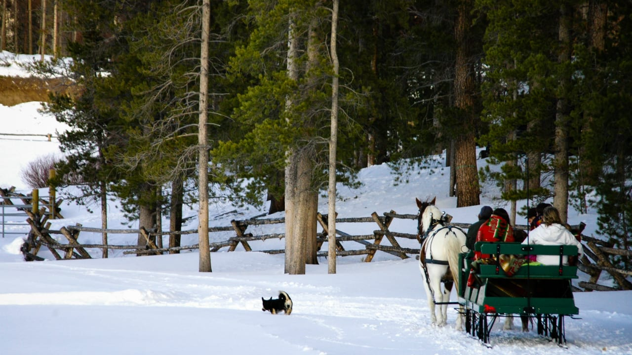 Devil's Thumb Ranch Sleigh Rides