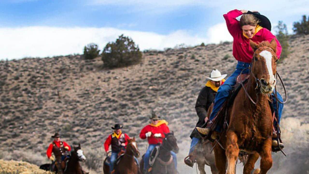 Pony Express National Historic Trail Horses