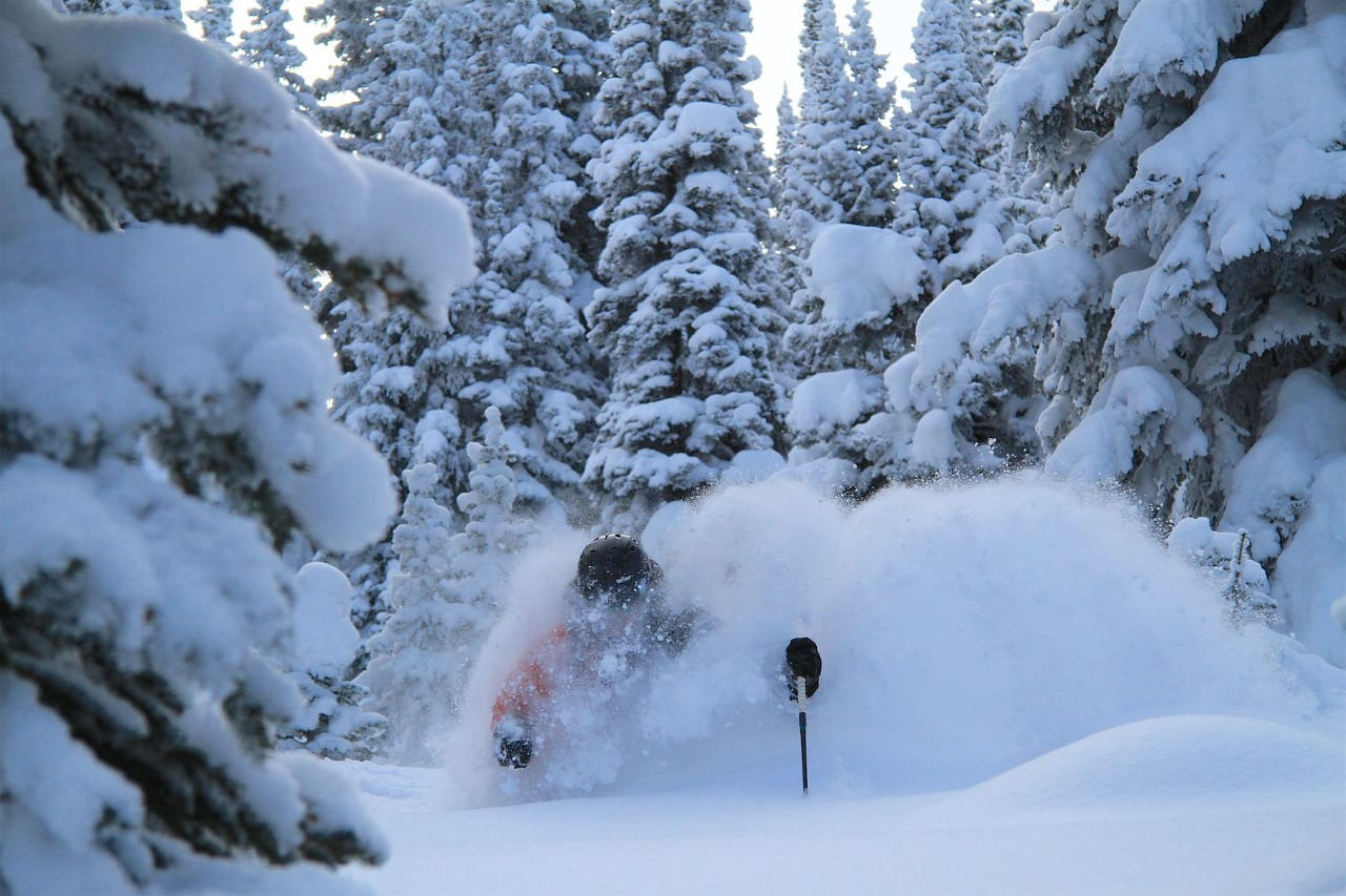 Tree Skiing Steamboat Powdercats Backcountry Skiing Colorado