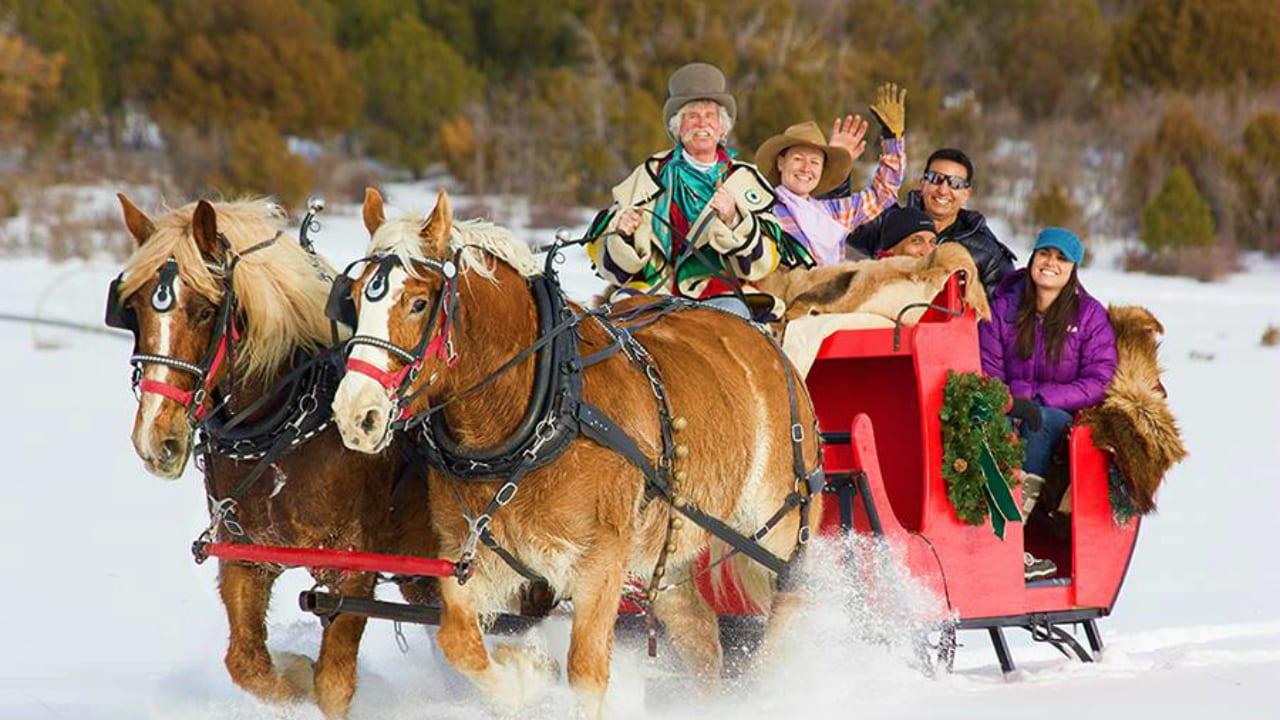 Telluride Horseback Adventures