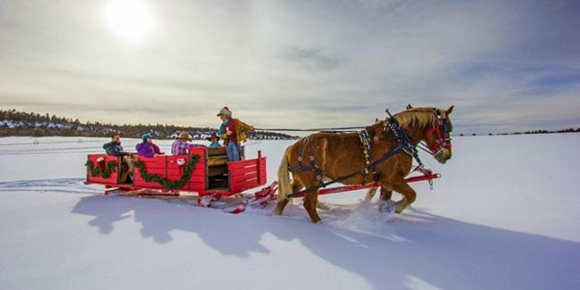 Telluride Horseback Adventures Sleigh Ride Norwood Colorado
