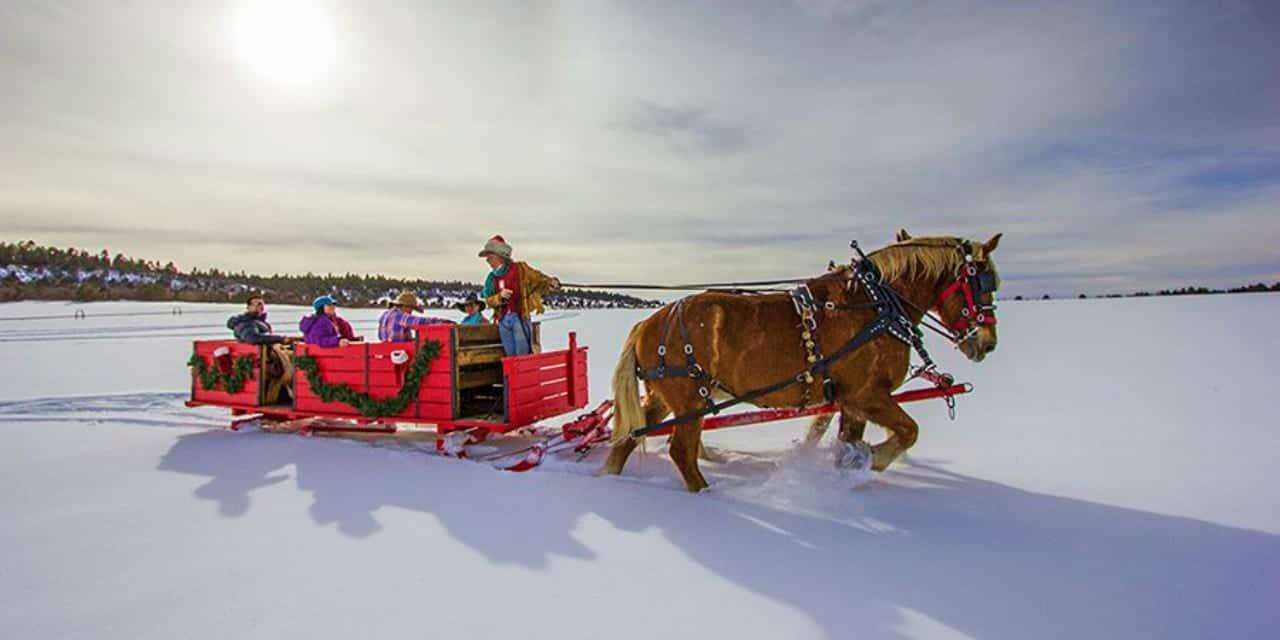 Telluride Horseback Adventures Sleigh Ride Norwood Colorado