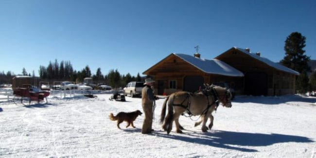 Winding River Resort Sleigh Ride Grand Lake Colorado