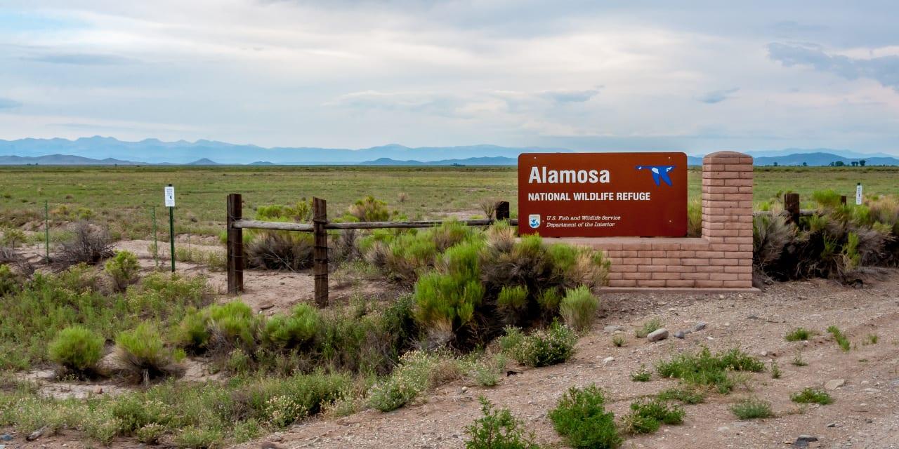 Alamosa National Wildlife Refuge Colorado