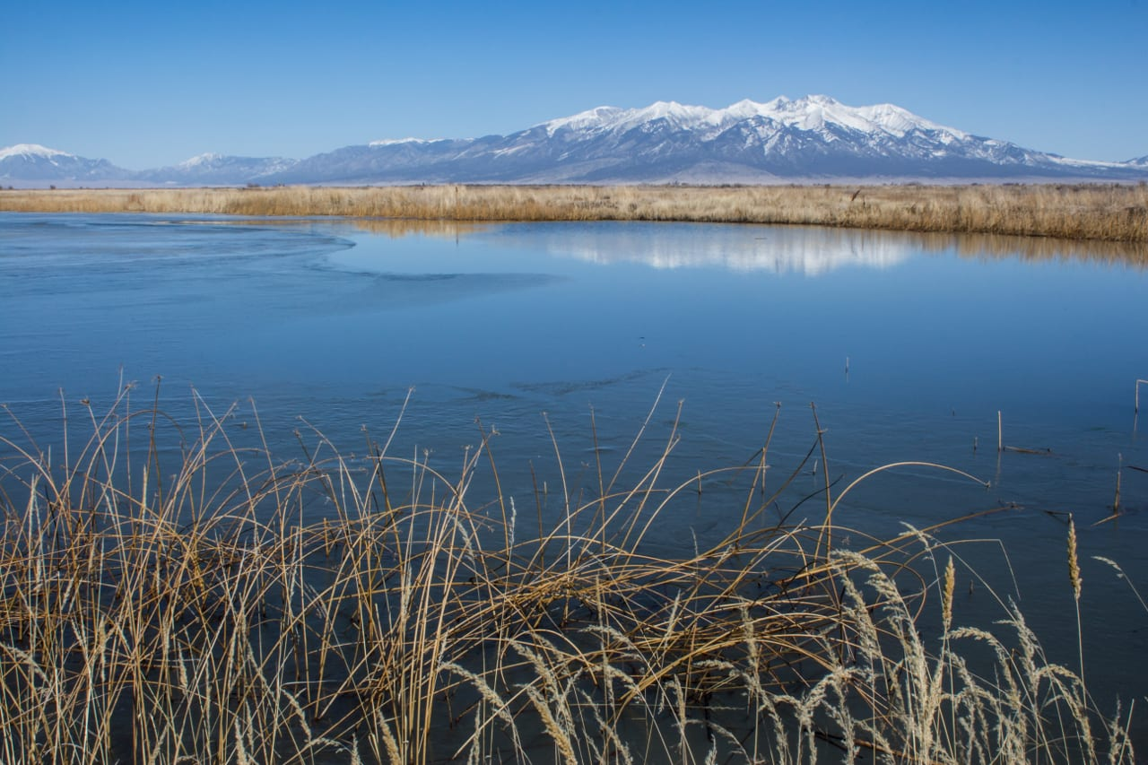 Alamosa National Wildlife Refuge Mountains River