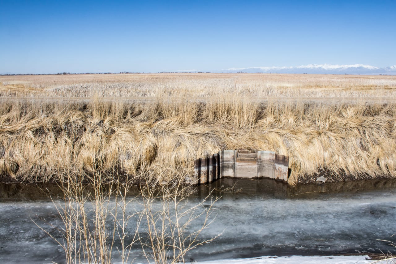 Alamosa National Wildlife Refuge