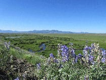 Arapaho National Wildlife Refuge Walden