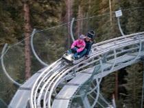 Breathtaker Alpine Coaster Aspen