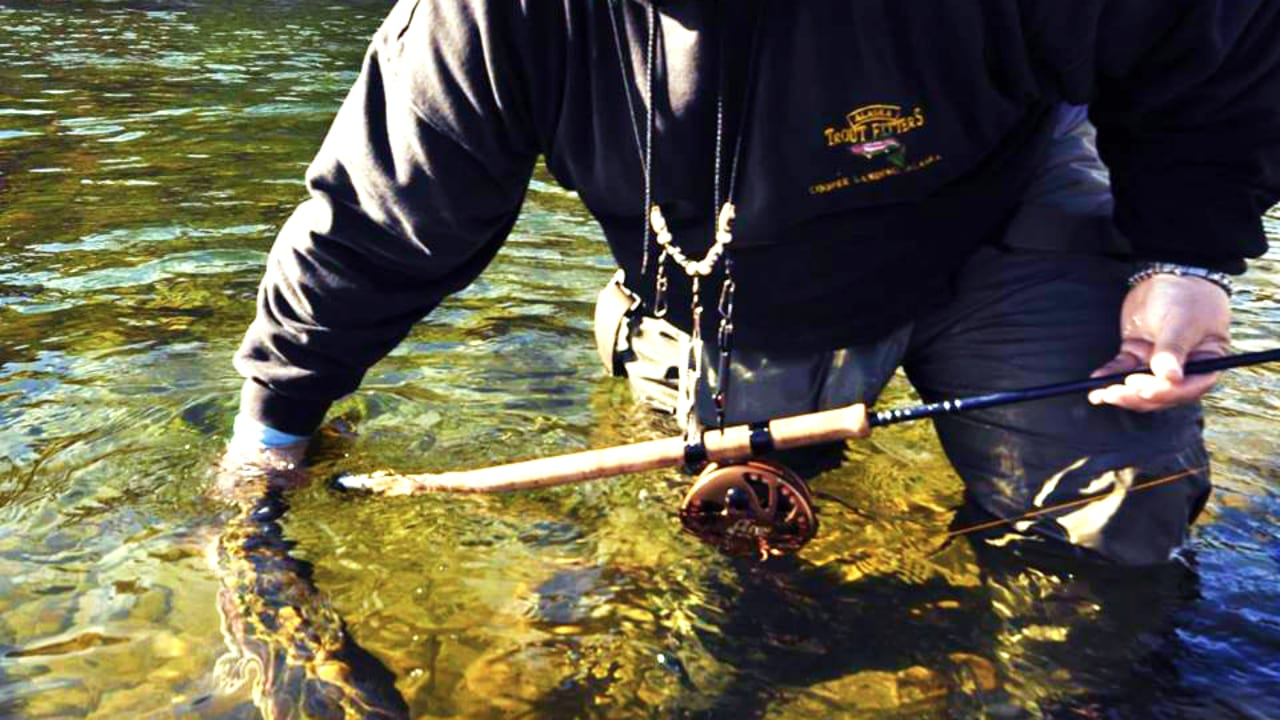 Eagle Claw Fishing Tackle Rod