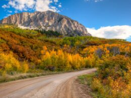 Kebler Pass Crested Butte Colorado