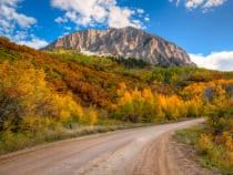 Kebler Pass Crested Butte