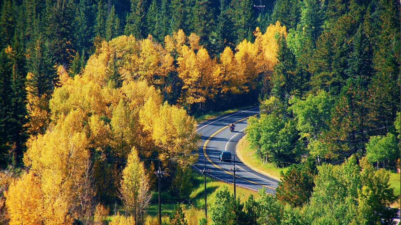 Peak to Peak Scenic Byway Fall Colors
