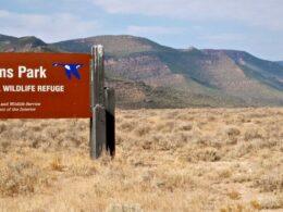 Browns Park National Wildlife Refuge Colorado Log Cabin
