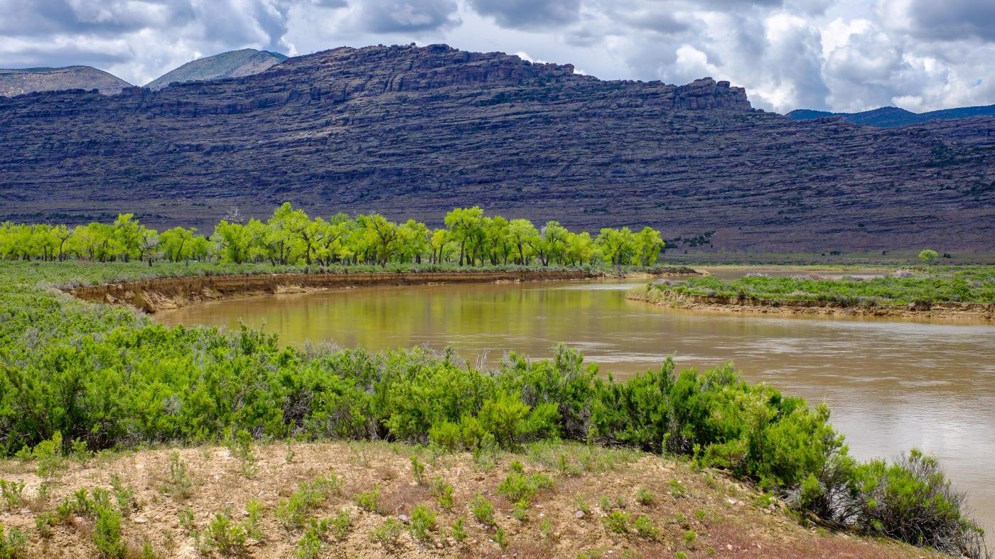 Browns Park National Wildlife Refuge Green River Colorado