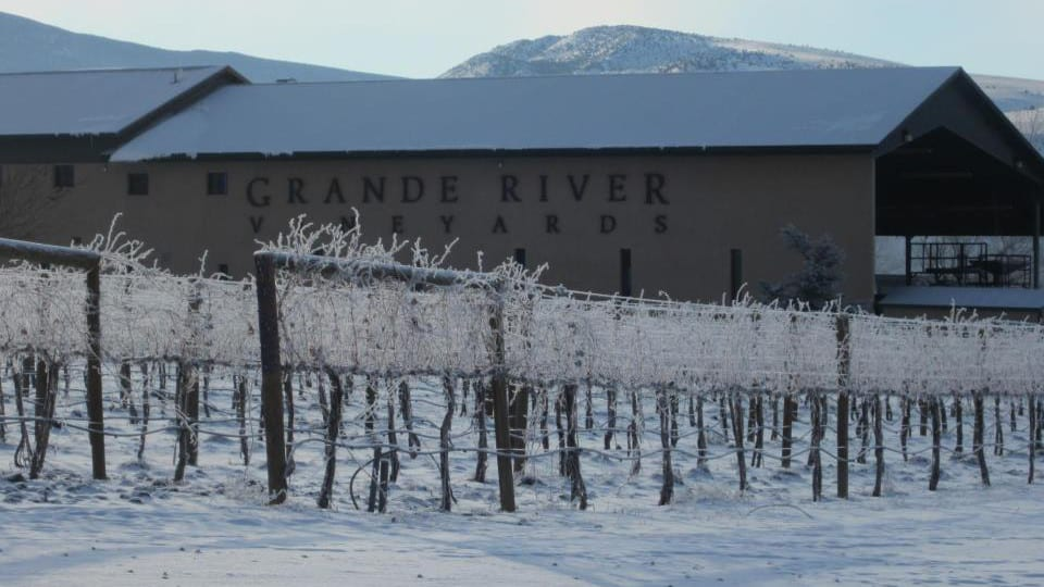 Grande River Vineyards Palisade Winter