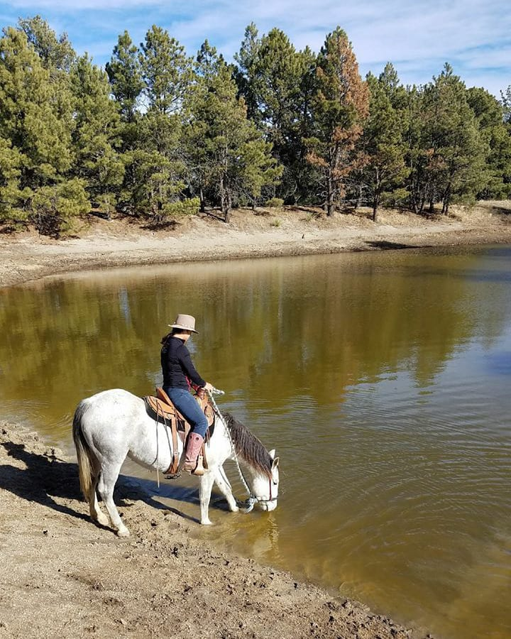 Great Escape Mustang Sanctuary Lake