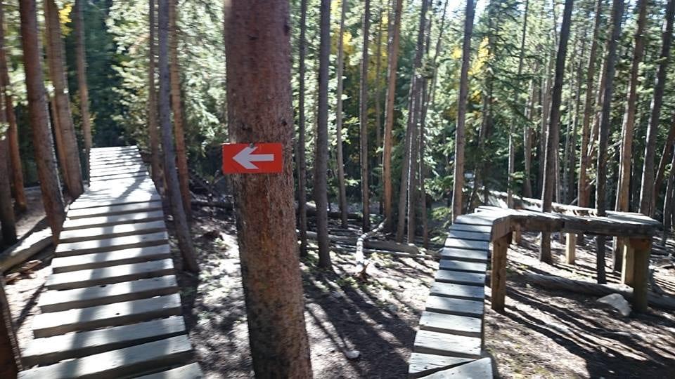 Keystone Bike Park Narrow Raised Trails