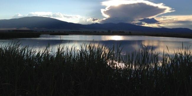 Monte Vista National Wildlife Refuge Colorado
