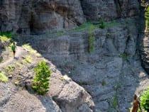 Bear Creek Recreation Trail