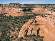 Black Ridge Canyons Wilderness Area
